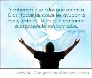 A los que aman a Dios…
