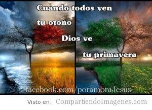 Dios ve tu Primavera