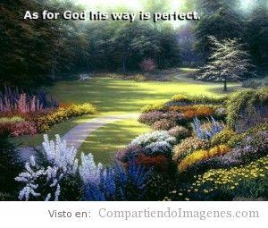 El camino de Dios es perfecto