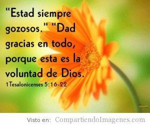 Dad Gracias a Dios en Todo
