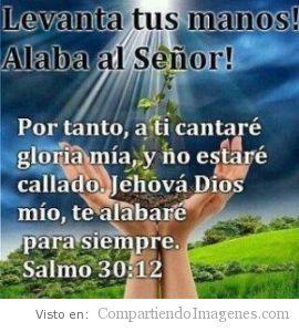 Alaba a Dios