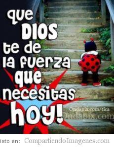 Que el Señor te fortalezca hoy