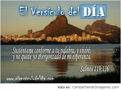 salmos-119-v116-el-versiculo-del-dia_0