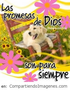 Las Promesas de Dios son para Siempre
