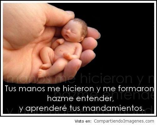 Tus_manos2