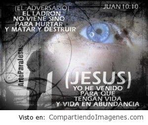 Jesús ha venido para que tengamos vida en abundancia