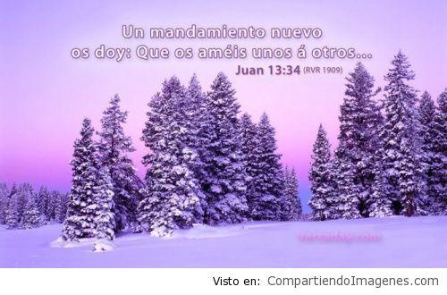 ImagenesConVersiculos_103
