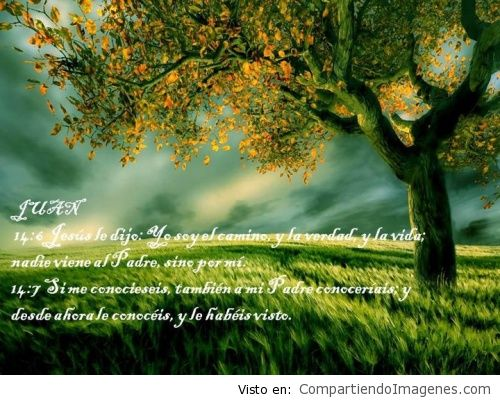 ImagenesConVersiculos_49