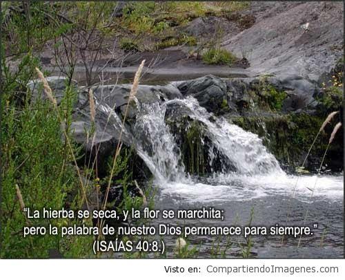 ImagenesConVersiculos_79