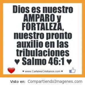 Tu eres Señor nuestro Amparo y Fortaleza