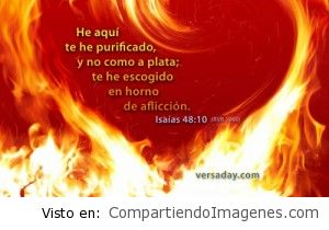 El Señor nos purifica…