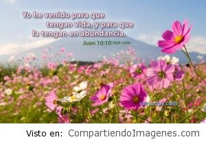 En Cristo tenemos vida en Abundancia