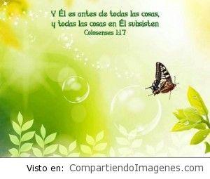 Dios creador de todo lo que existe
