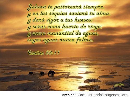Jehova es nuestro pastor