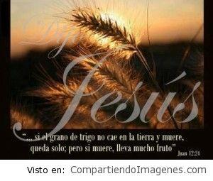 Úsame Señor Jesus