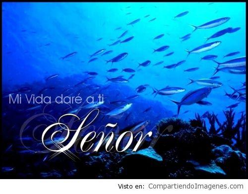 Mi_vida_dare_a_ti_Seor_1
