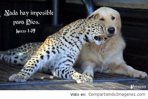 Nada hay imposible para Dios3