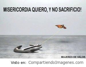 Misericordia quiero y no sacrificio