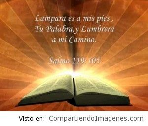 Iluminas mi camino Señor con tu Palabra