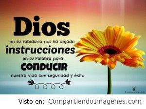 Instrucciones de Dios para nuestra vida