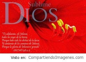 Sublime Dios