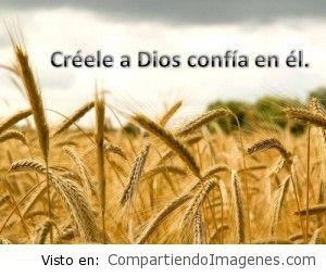 Confía en el Señor Jesus, El es Fiel