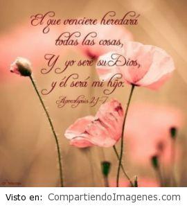 Eres mi Dios