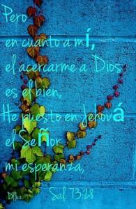 El Señor es mi esperanza