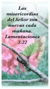 Las misericordias del Señor son nuevas cada dia