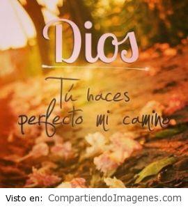 Señor, tu haces perfecto mi camino