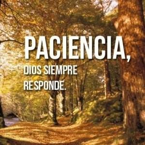 Ten paciencia, Dios siempre responde