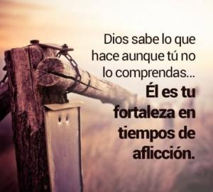 El Señor es nuestra fortaleza en tiempo de afliccion