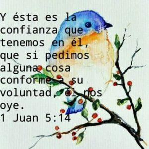 Dios nos oye!