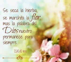La palabra de Dios permanece para siempre!