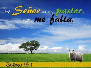 El Señor es mi Pastor y nada me faltara