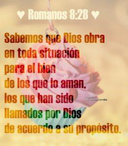 A los que aman a Dios todo obra para bien