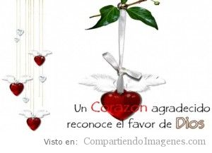 Un corazon agradecido reconoce el favor de Dios