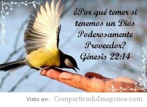 Dios es nuestro proveedor