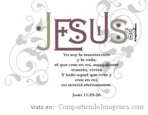 En Cristo hay vida
