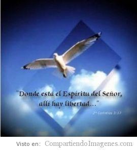 Hay libertad donde esta el Espiritu de Dios