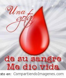 Con tu Sangre me diste vida!