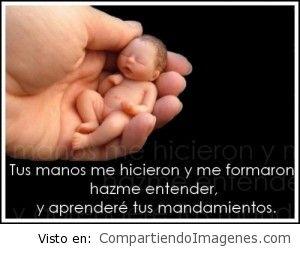 Señor, tus manos me hicieron y me formaron…