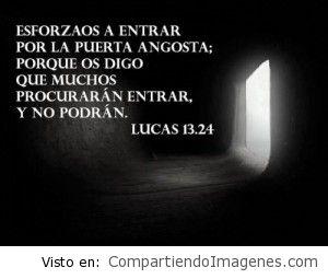 Caminando siempre en los caminos del Señor