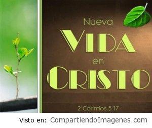 En Cristo tengo nueva vida!