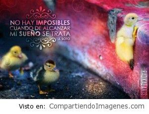 No hay imposibles!