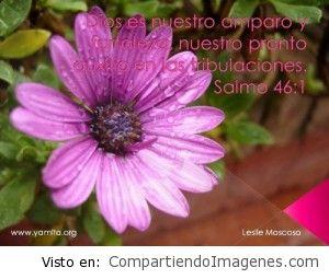 Nuestra Fortaleza es el Señor