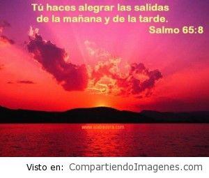 Hermosa es tu creación Señor