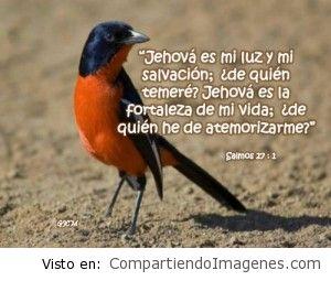 Jehova es mi luz y mi Salvacion