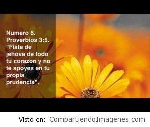 Confía en el Señor con todo tu corazon
