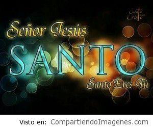 Santo eres tu Señor Jesus
